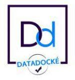 datadock logo_1